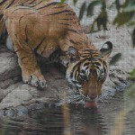 """Mozaika wielkoformatowa (projekt) """"Tiger"""", 190 x 250cm"""